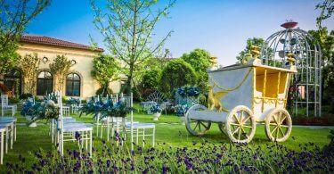 Düğün Organizasyonu Nedir